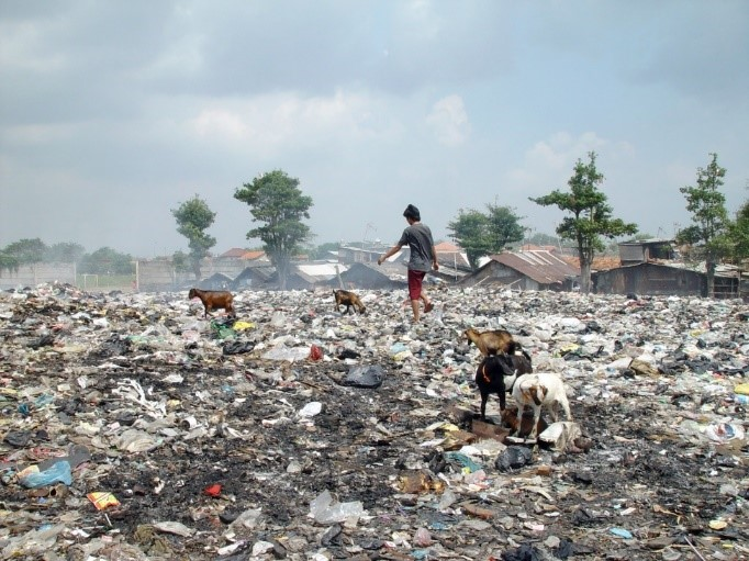 Figure 2: Landfills - Still an issue in some developing countries (Image courtesy: Wikicommons).